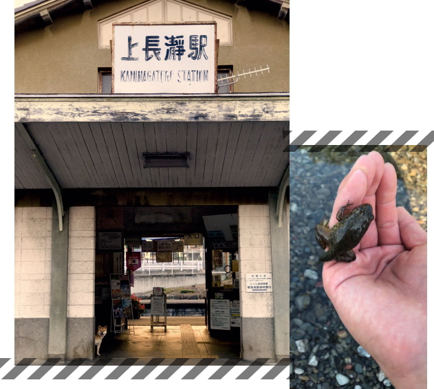 長瀞2017.10.13